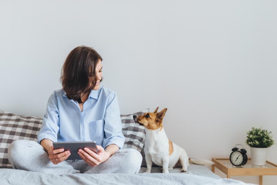 Fuer Hunde sind Menschen Bestandteil eines Rudels