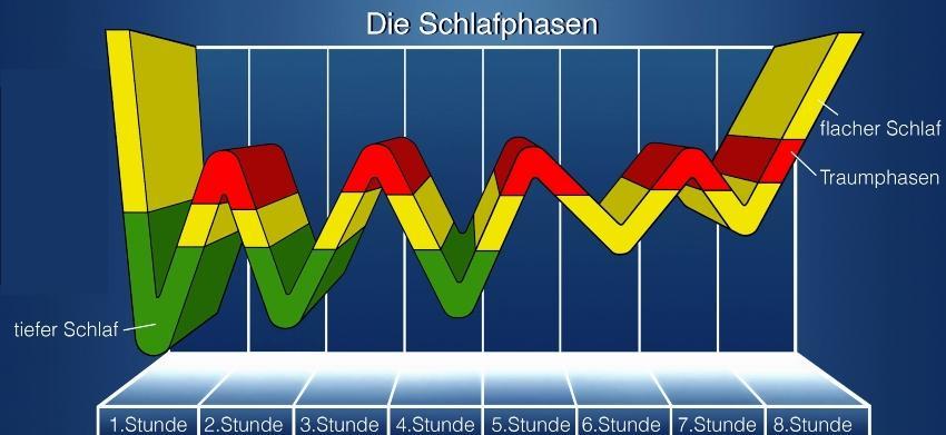 Schlafrhythmus, grafisch dargestellt