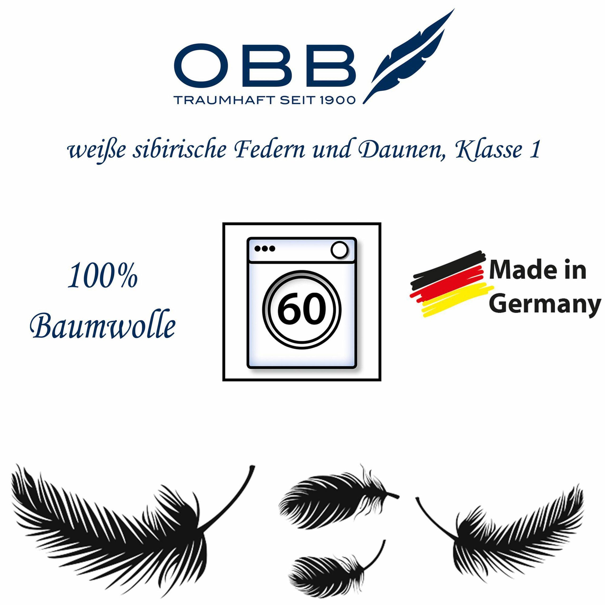 """OBB """"Edition"""" Kassettendecke, waschbar, weiße neue sibirische Federn und Daunen"""