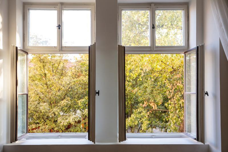 2 offene Fenster mit Blick auf Bäume