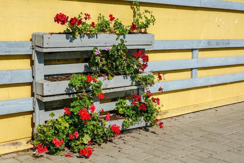 Europalette als Blumenkübel