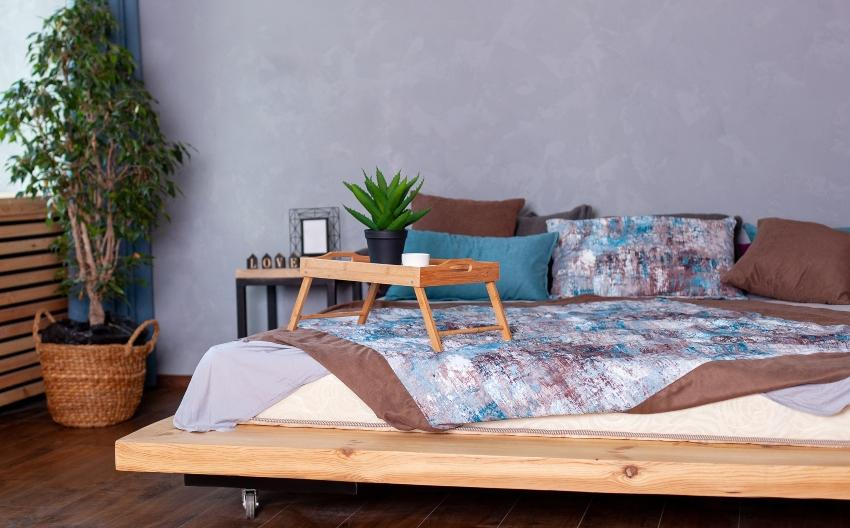 Aloe Pflanze auf dem Tablett im Bett